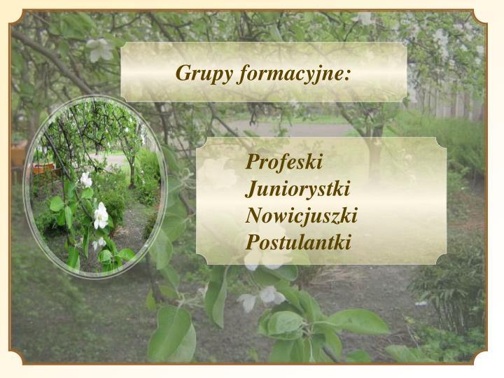 Grupy formacyjne: