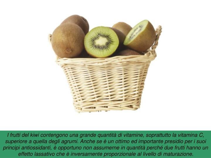 I frutti del kiwi contengono una grande quantità di vitamine, soprattutto la vitamina C,  superiore a quella degli agrumi. Anche se è un ottimo ed importante presidio per i suoi principi antiossidanti, è opportuno non assumerne in quantità perché due frutti hanno un effetto lassativo che è inversamente proporzionale al livello di maturazione.