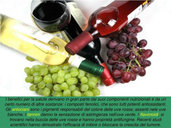 I benefici per la salute derivano in gran parte dai suoi componenti nutrizionali e da un certo numero di altre sostanze: i composti fenolici, che sono tutti potenti antiossidanti. Gli