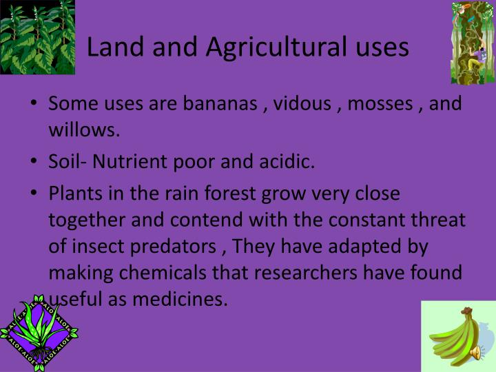 Land and Agricultural uses