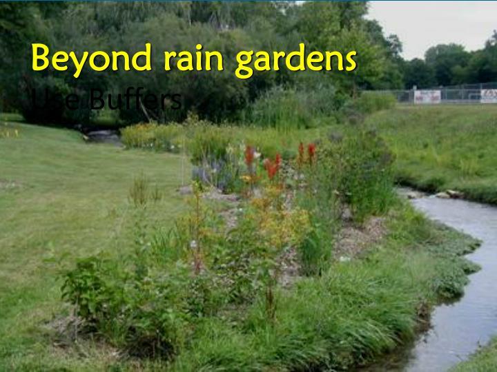 Beyond rain gardens