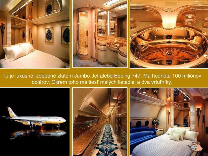 Tu je luxusn, zdoben zlatom Jumbo-Jet alebo Boeing 747. M hodnotu 100 milinov dolrov. Okrem toho m es malch lietadiel a dva vrtunky.