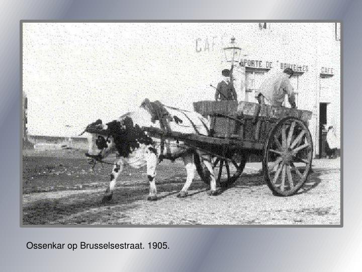 Ossenkar op Brusselsestraat. 1905.