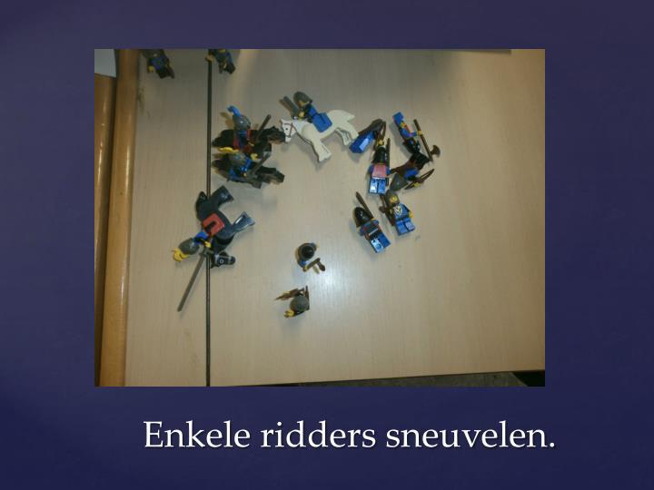 Enkele ridders sneuvelen.