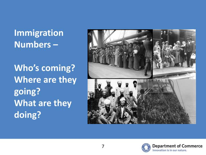 Immigration Numbers –