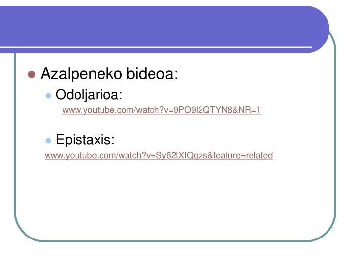Azalpeneko bideoa: