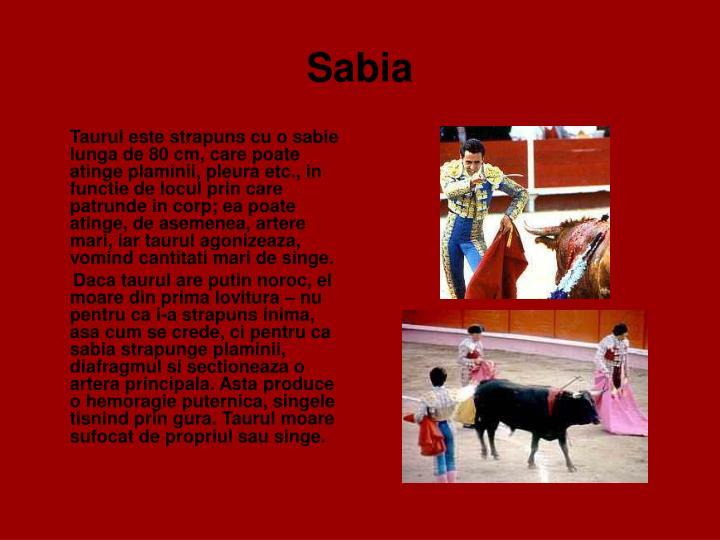 Sabia