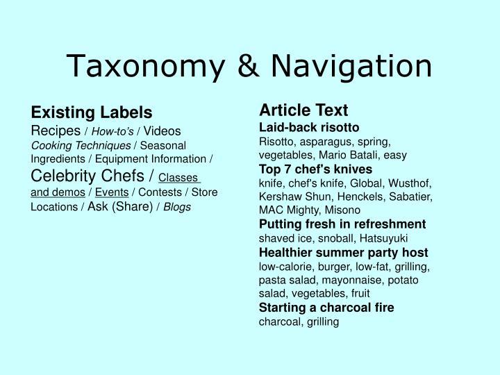 Taxonomy & Navigation