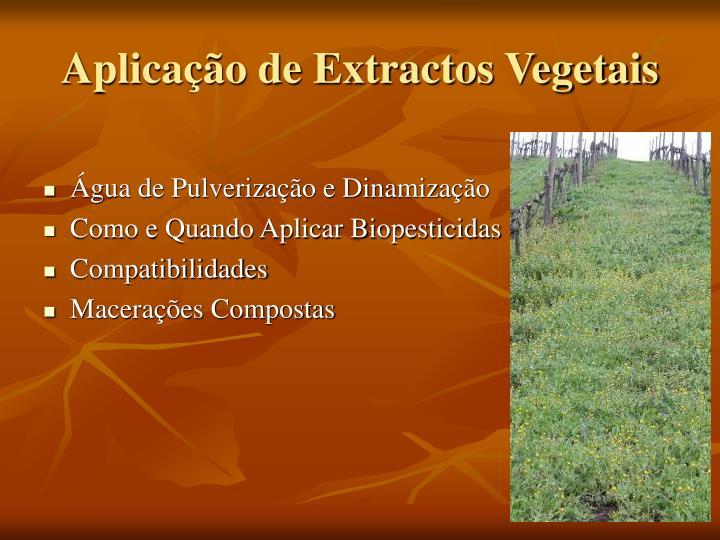 Aplicação de Extractos Vegetais