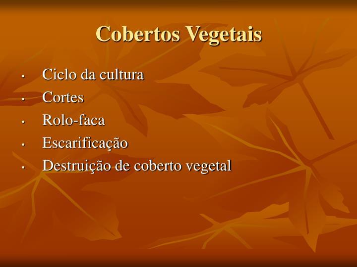 Cobertos Vegetais