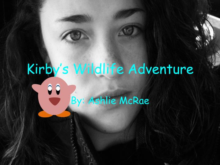 Kirby s wildlife adventure