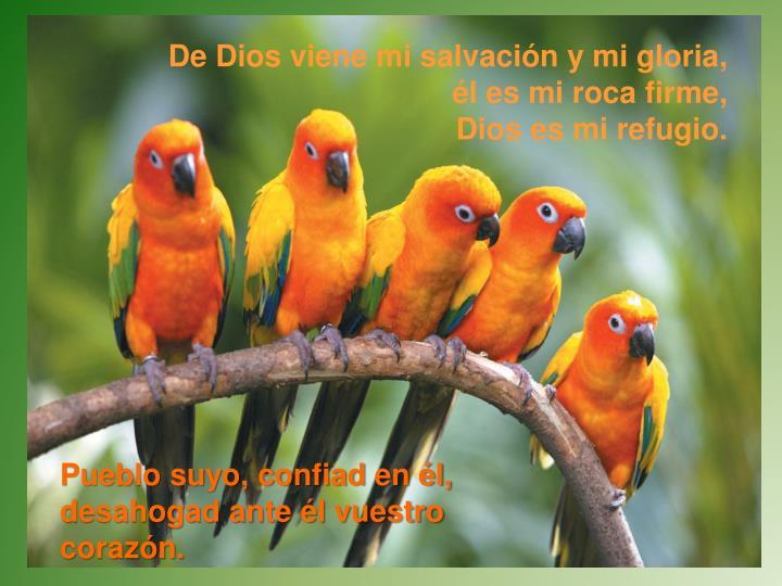 De Dios viene mi salvación y mi gloria,