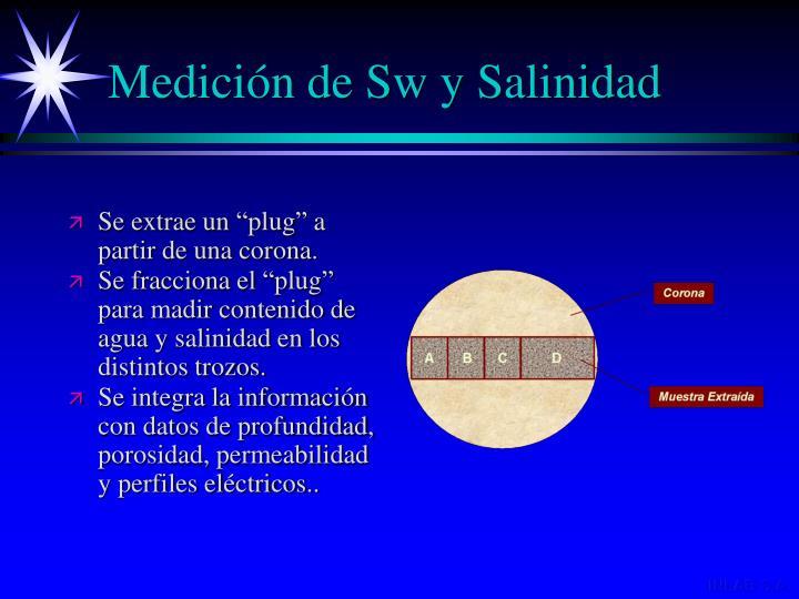 Medición de Sw y Salinidad