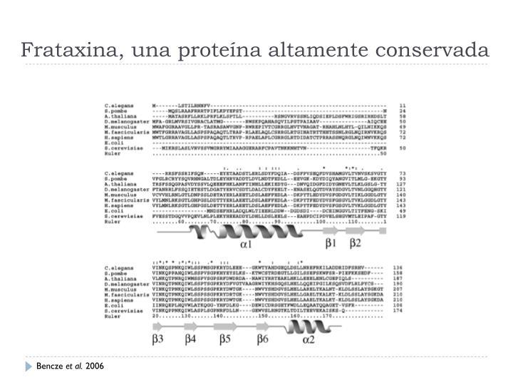 Frataxina