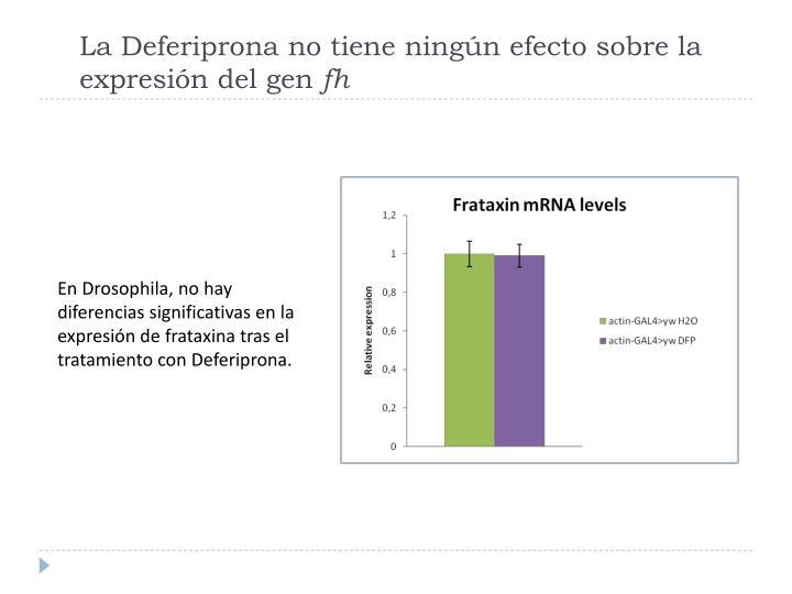 La Deferiprona no tiene ningún efecto sobre la expresión del gen