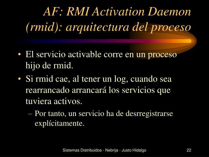 AF: RMI Activation Daemon (rmid): arquitectura del proceso