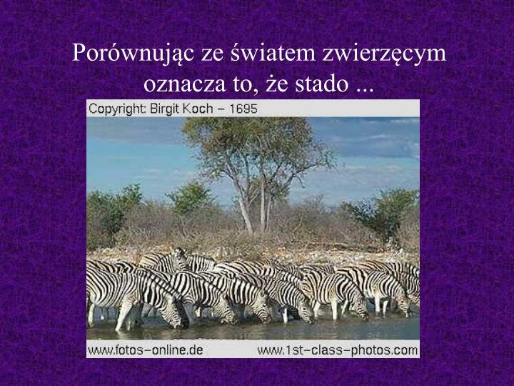 Porównując ze światem zwierzęcym oznacza to, że stado ...