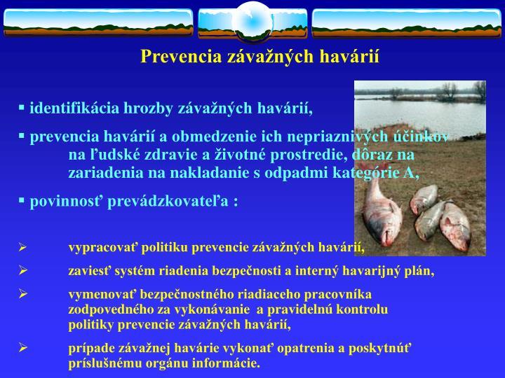 Prevencia závažných havárií