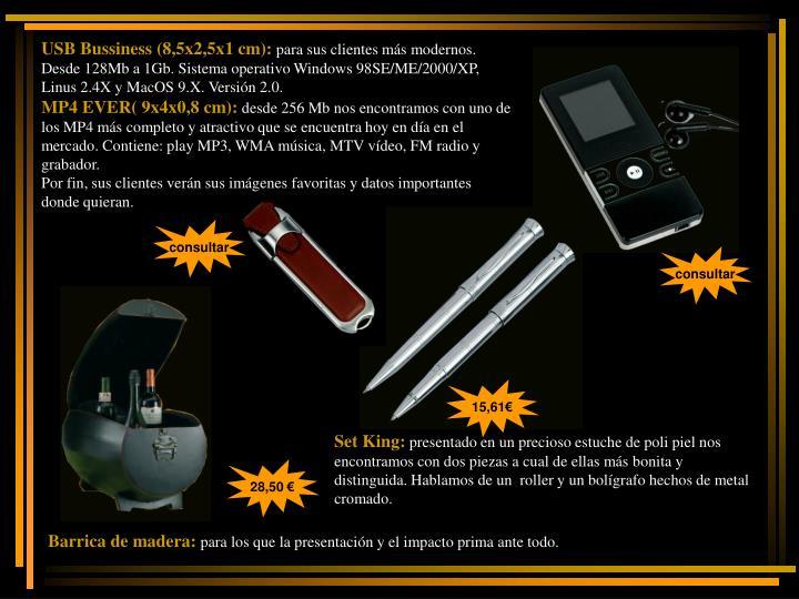 USB Bussiness (8,5x2,5x1 cm):