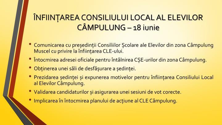 ÎNFIINȚAREA CONSILIULUI LOCAL AL ELEVILOR CÂMPULUNG – 18 iunie
