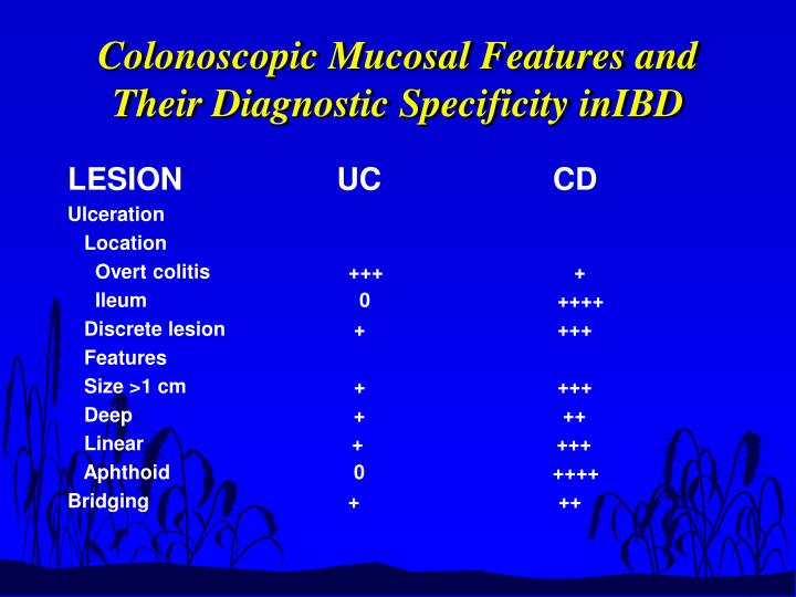Colonoscopic Mucosal Features and Their Diagnostic Specificity inIBD