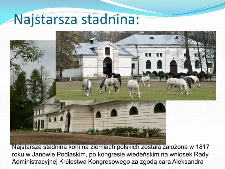 Najstarsza stadnina: