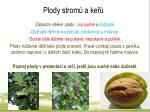 plody strom a ke1