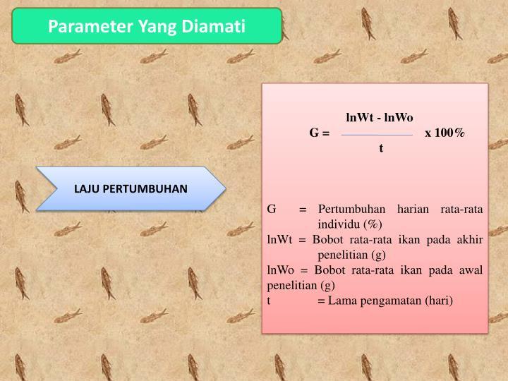 Parameter Yang