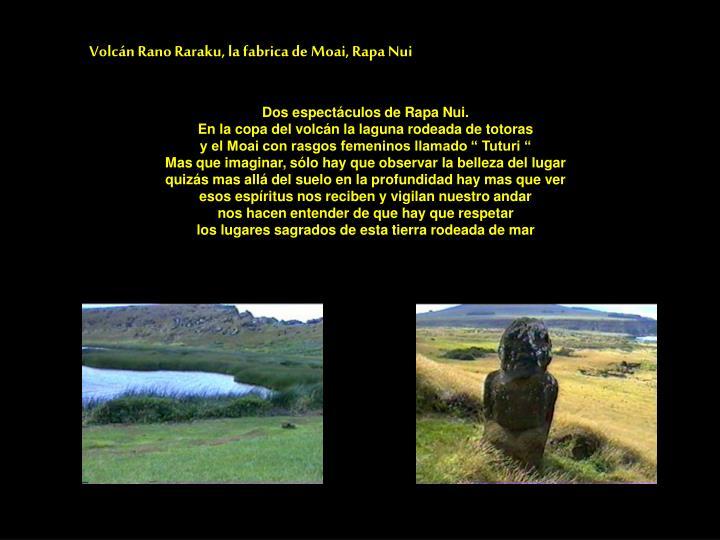 Volcán Rano Raraku, la fabrica de Moai, Rapa Nui