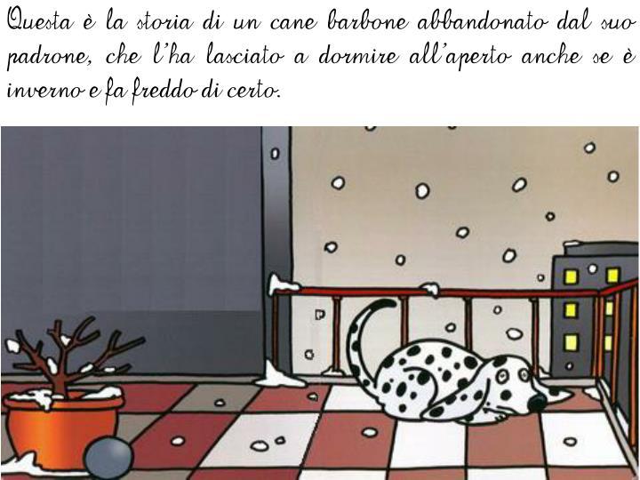 Questa è la storia di un cane barbone abbandonato dal suo padrone, che l'ha lasciato a dormire all'aperto anche se è inverno e fa freddo di certo.