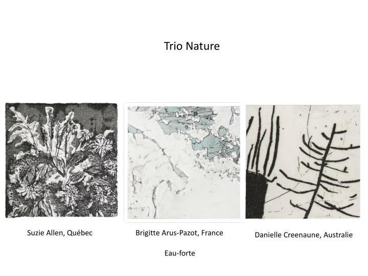Trio Nature