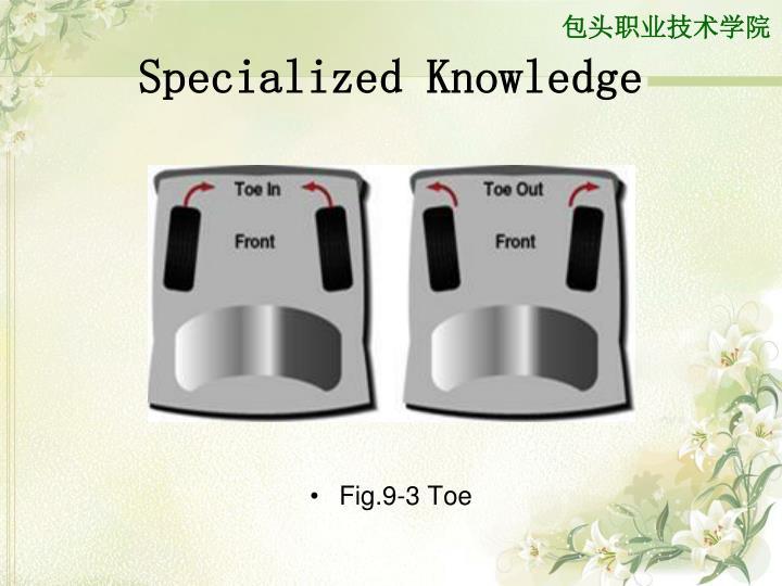Specialized Knowledge