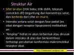 struktur air3