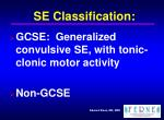 se classification