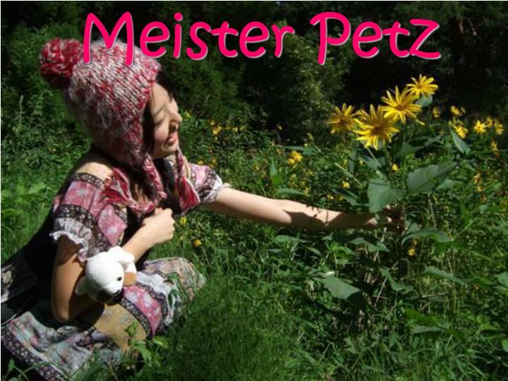 Meister Petz