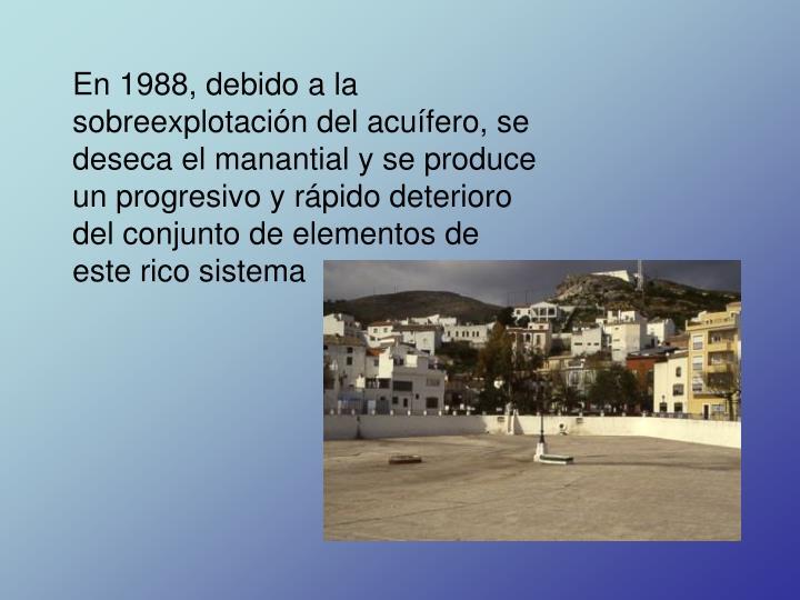 En 1988, debido a la sobreexplotación del acuífero, se deseca el manantial y se produce un progresivo y rápido deterioro del conjunto de elementos de este rico sistema