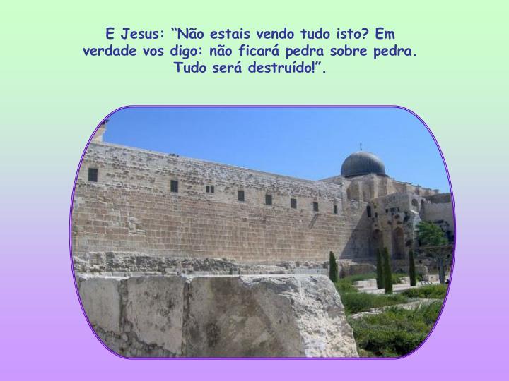 """E Jesus: """"Não estais vendo tudo isto? Em verdade vos digo: não ficará pedra sobre pedra. Tudo será destruído!""""."""