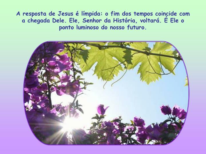 A resposta de Jesus é límpida: o fim dos tempos coincide com a chegada Dele. Ele, Senhor da História, voltará. É Ele o ponto luminoso do nosso futuro.