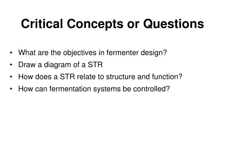 Critical Concepts or Questions