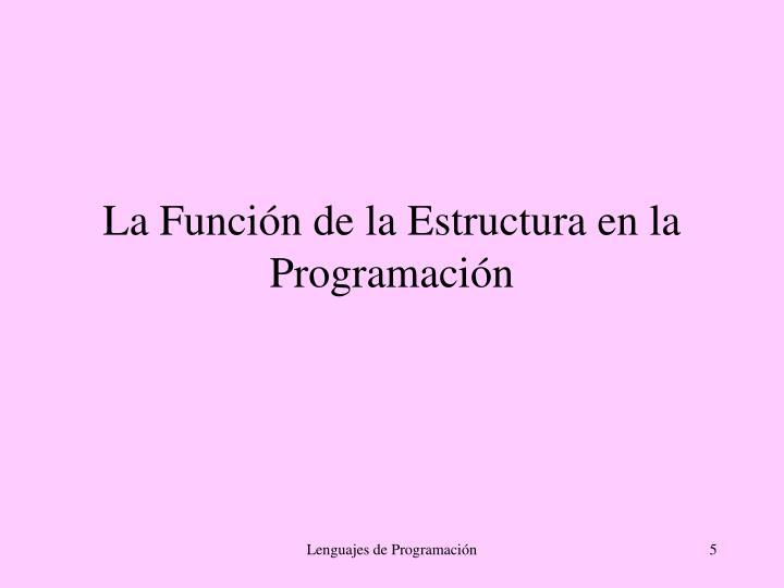 La Función de la Estructura en la Programación