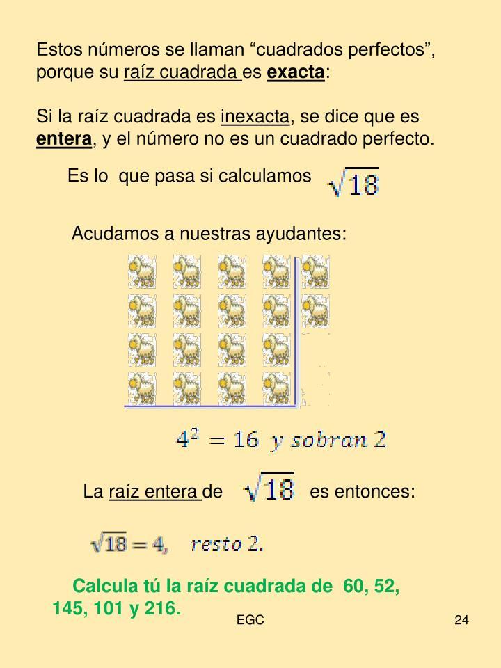 """Estos números se llaman """"cuadrados perfectos"""", porque su"""