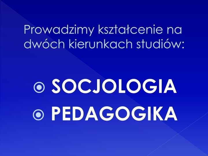 Prowadzimy kształcenie na dwóch kierunkach studiów: