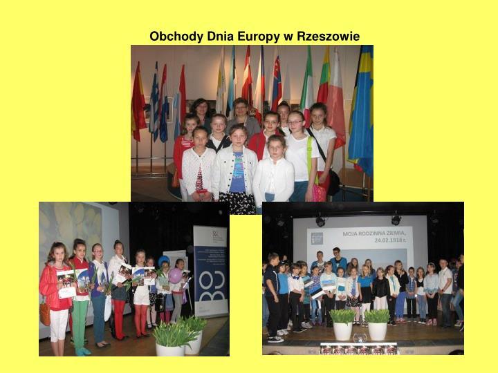 Obchody Dnia Europy w Rzeszowie