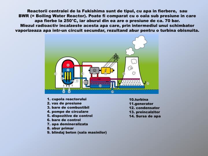 Reactorii centralei de la Fukishima sunt de tipul, cu apa in fierbere,  sau                                 BWR (= Boiling Water Reactor). Poate fi comparat cu o oala sub presiune in care             apa fierbe la 250°C, iar aburul din ea are o presiune de ca. 70 bar.                                         Miezul radioactiv incalzeste acesta apa care, prin intermediul unui schimbator vaporizeaza apa intr-un circuit secundar, rezultand abur pentru o turbina obisnuita.