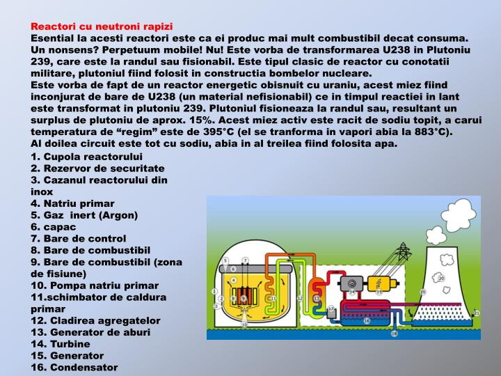 Reactori cu neutroni rapizi
