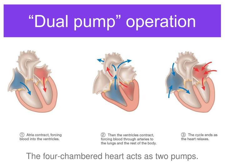 """Dual pump"" operation"