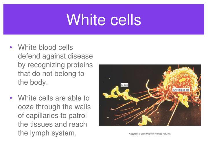 White cells