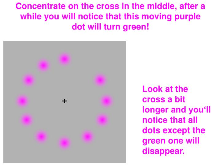 Concentrate on the cross in the middle, after a while you will notice that this moving purple dot will turn green!