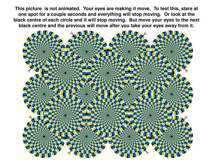 This picture  is not animated.  Your eyes are making it move.  To test this, stare at one spot for...