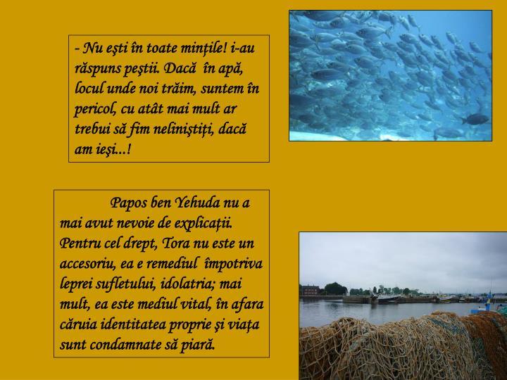 - Nu eşti în toate minţile! i-au răspuns peştii. Dacă  în apă, locul unde noi trăim, suntem în pericol, cu atât mai mult ar trebui să fim neliniştiţi, dacă am ieşi...!